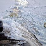 Klimat i bezpieczeństwo środowiskowe – raport Atlantic Council